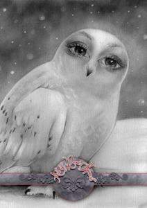 Sister Owl